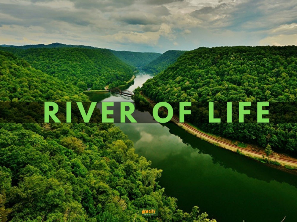 River Of Life Image