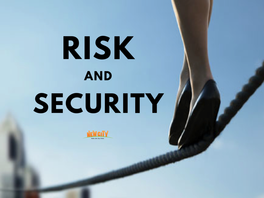 Risk And Security Image