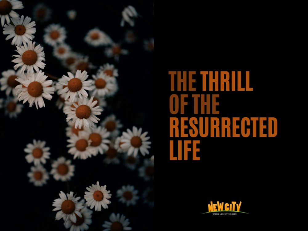 The Thrill of the Resurrected Life Image