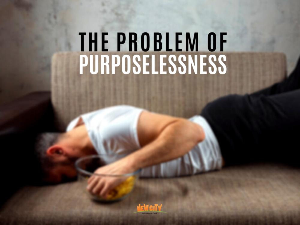 The Problem of Purposelessness Image
