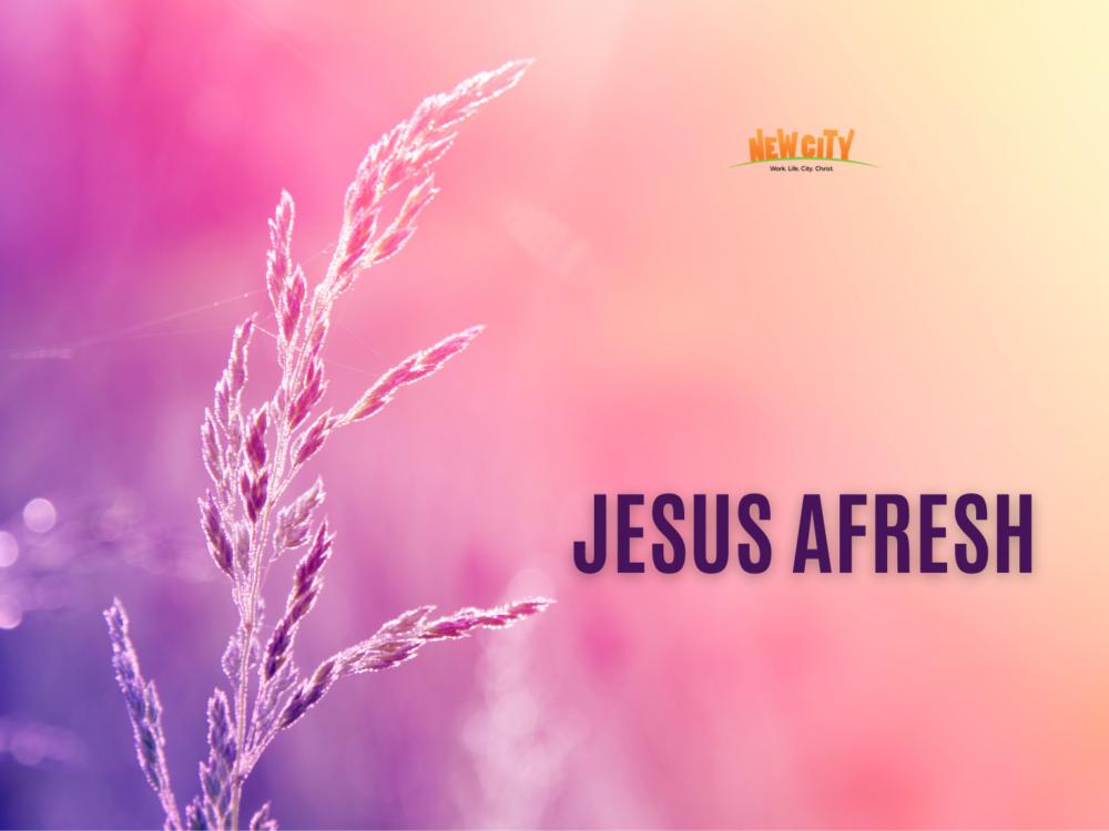 Jesus Afresh Image
