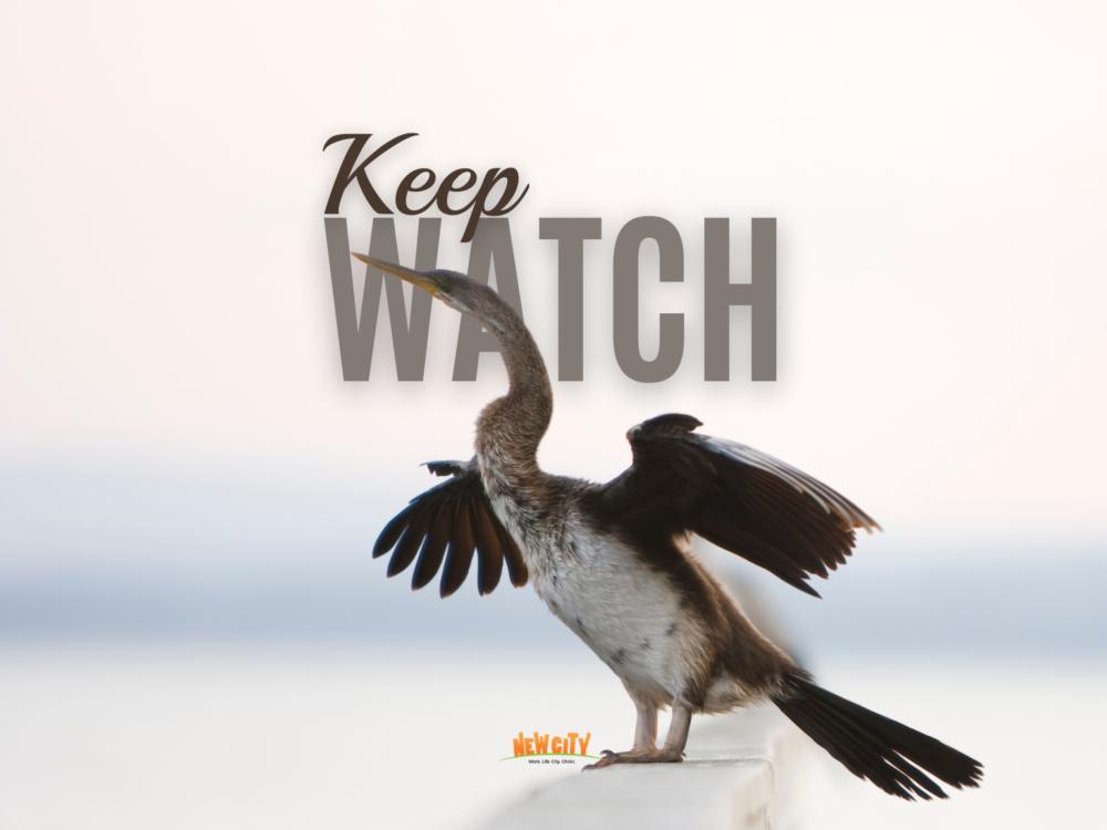 Keep Watch Image