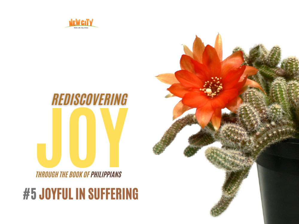 Joyful in Suffering Image