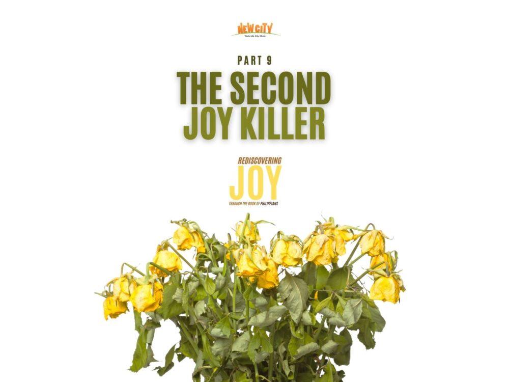 The Second Joy Killer Image